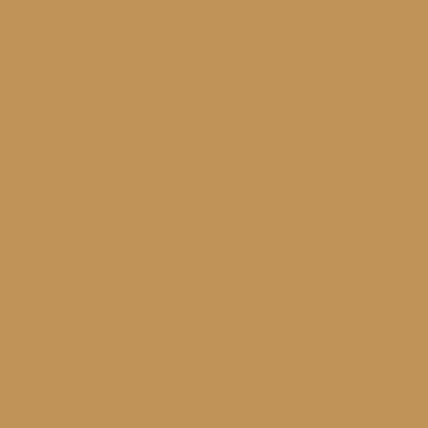 Watercolour pastelky Derwent 58 RAW SIENNA