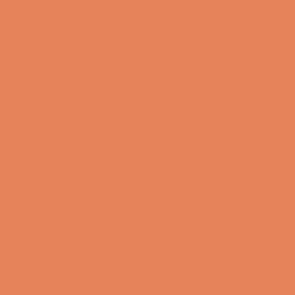 Watercolour pastelky Derwent 10 ORANGE CHROME